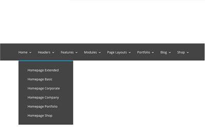 divi menu module